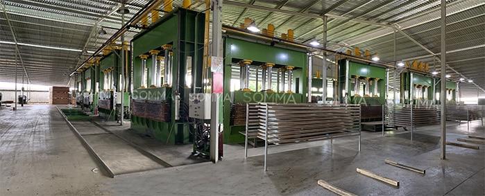Nhà máy sản xuất ván ép SOMMA