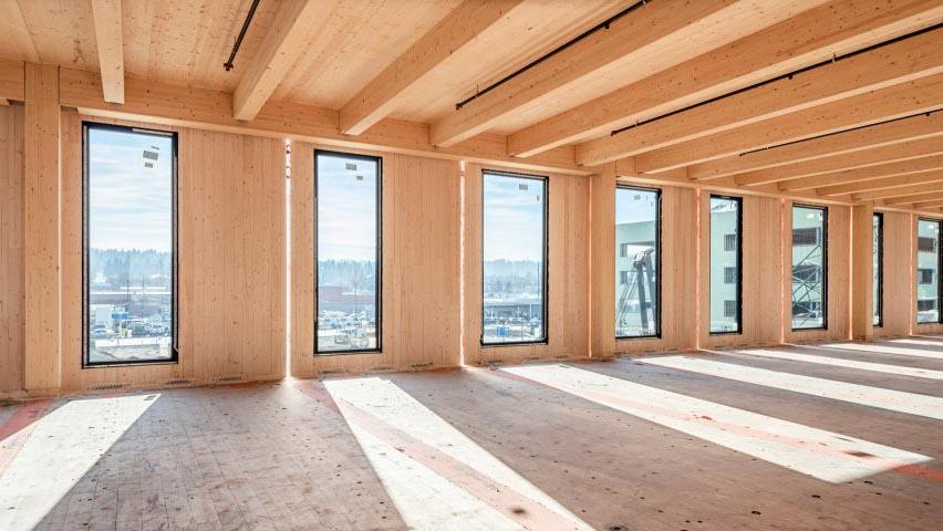 gỗ kỹ thuật là gì