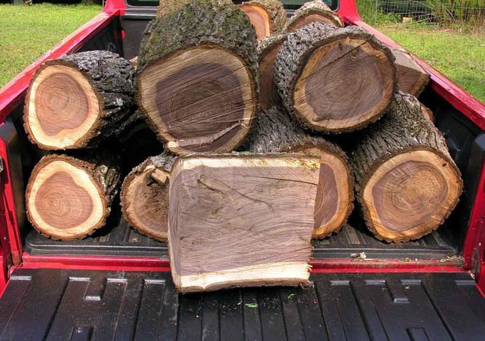 gỗ óc chó là gì